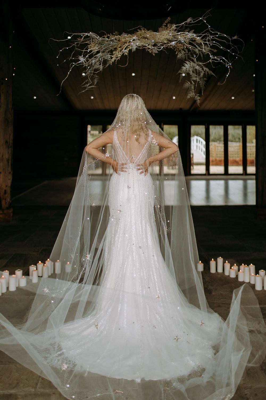 Dress Gown Bride Bridal Starry Veil Embroidered Gold Stars Sequins Celestial Wedding Ideas Christine Thirdwheeling