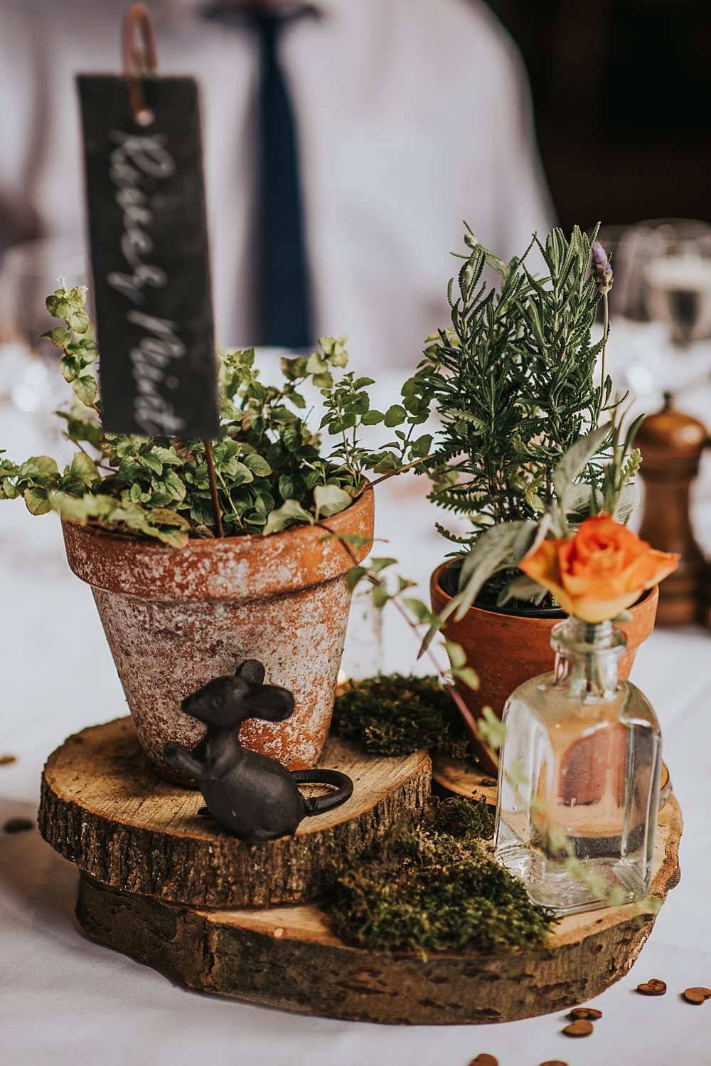 Centrepiece Table Decor Decoration Pot Plants Herbs Boho Rustic Wedding This and That Photography