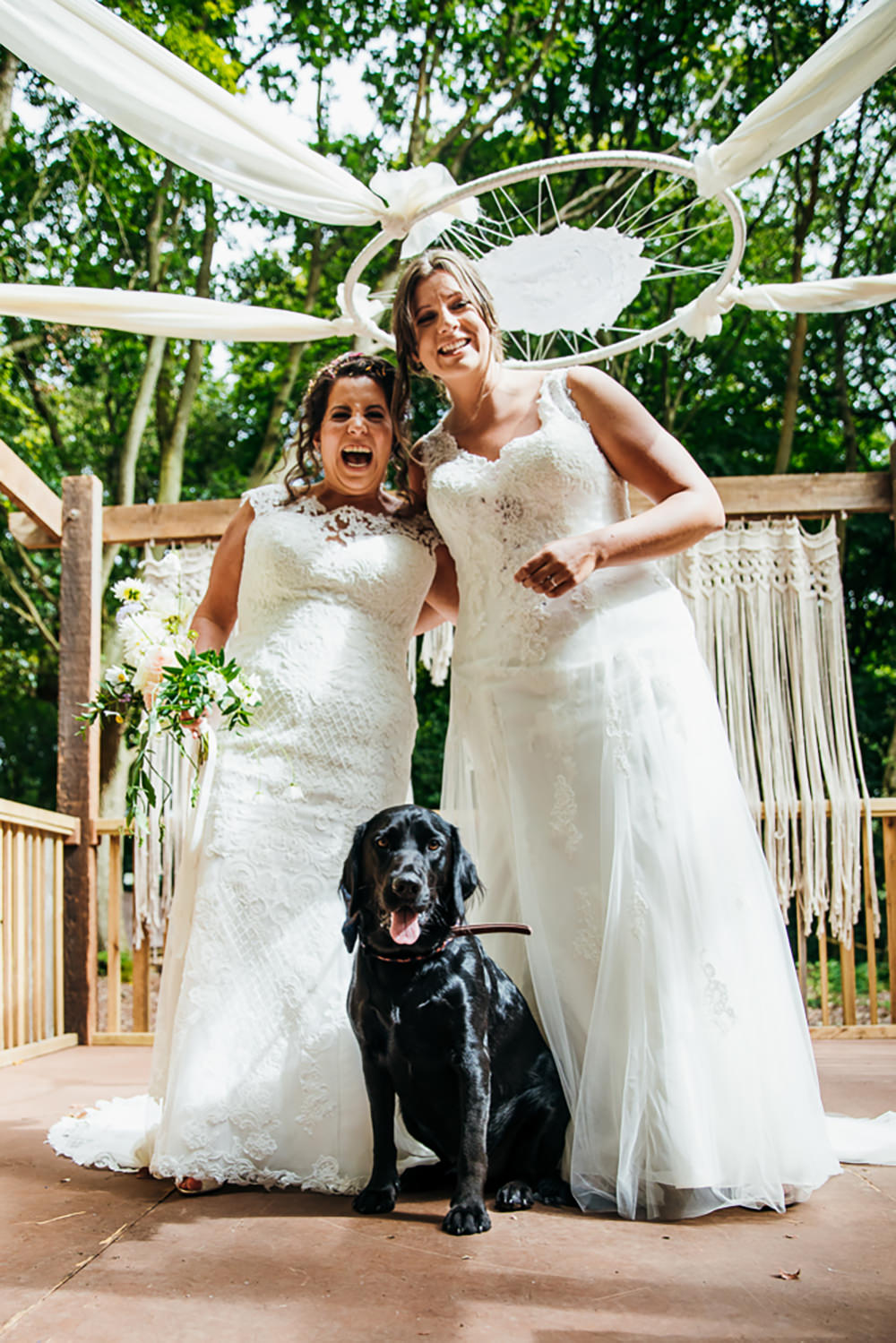Dog Pet Lila's Wood Wedding Two-D Photography