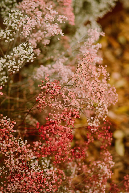 Flower Arrangement Flowers Ceremony Pink Gyp Gypsophila Outdoor Autumn Wedding Ruby Walker Photography