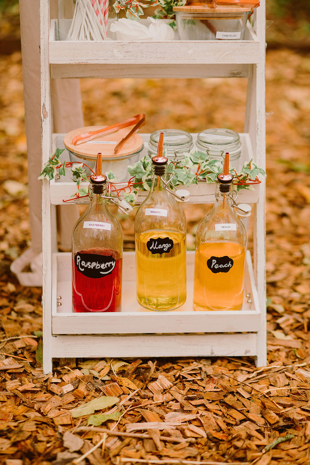 Wooden Ladder Drinks Pimp Your Prosseco Outdoor Autumn Wedding Ruby Walker Photography
