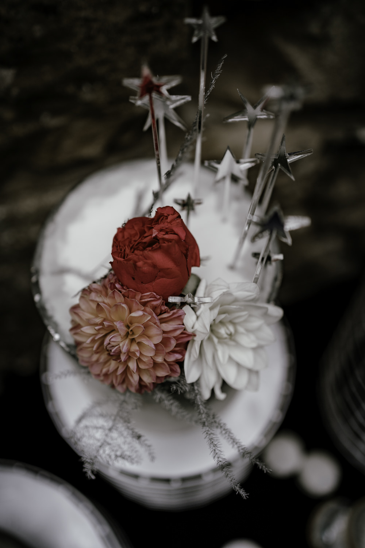 Iced Cake Macaron Celestial Flowers Stars Midsummer Night's Dream Wedding Ideas Dani Louise Photography