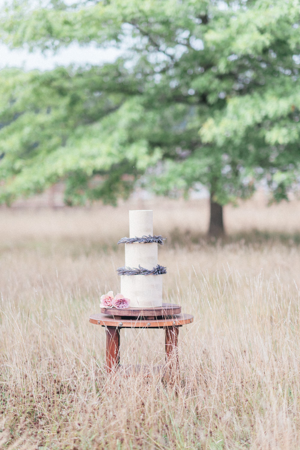 Lavender Cake Buttercream Iced UK Destination Wedding Hannah McClune Photography