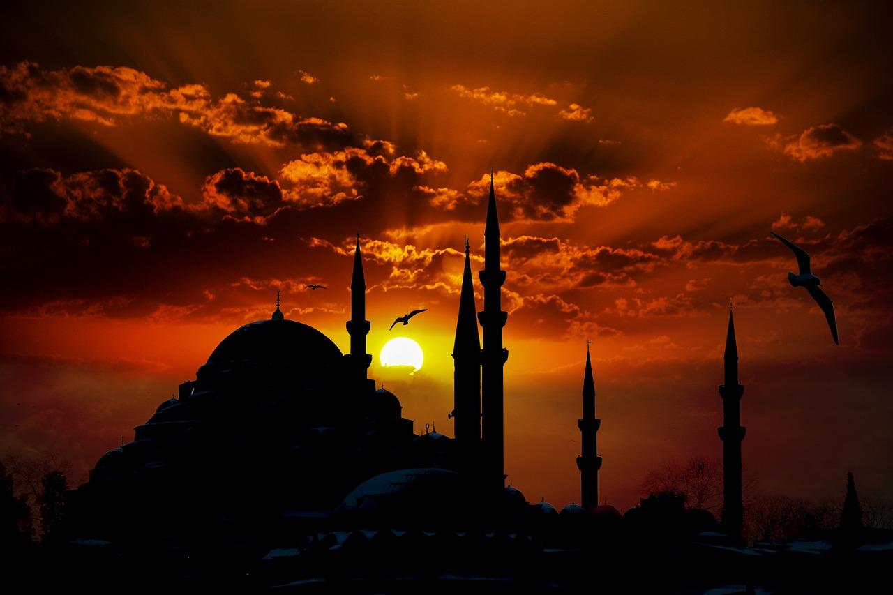 Langkah Pembelian Karpet Masjid yang Cepat dan Mudah