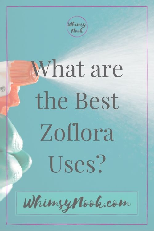 What are the best Zoflora Uses?
