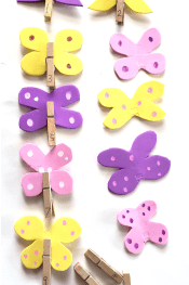 Butterfly Counting Activity
