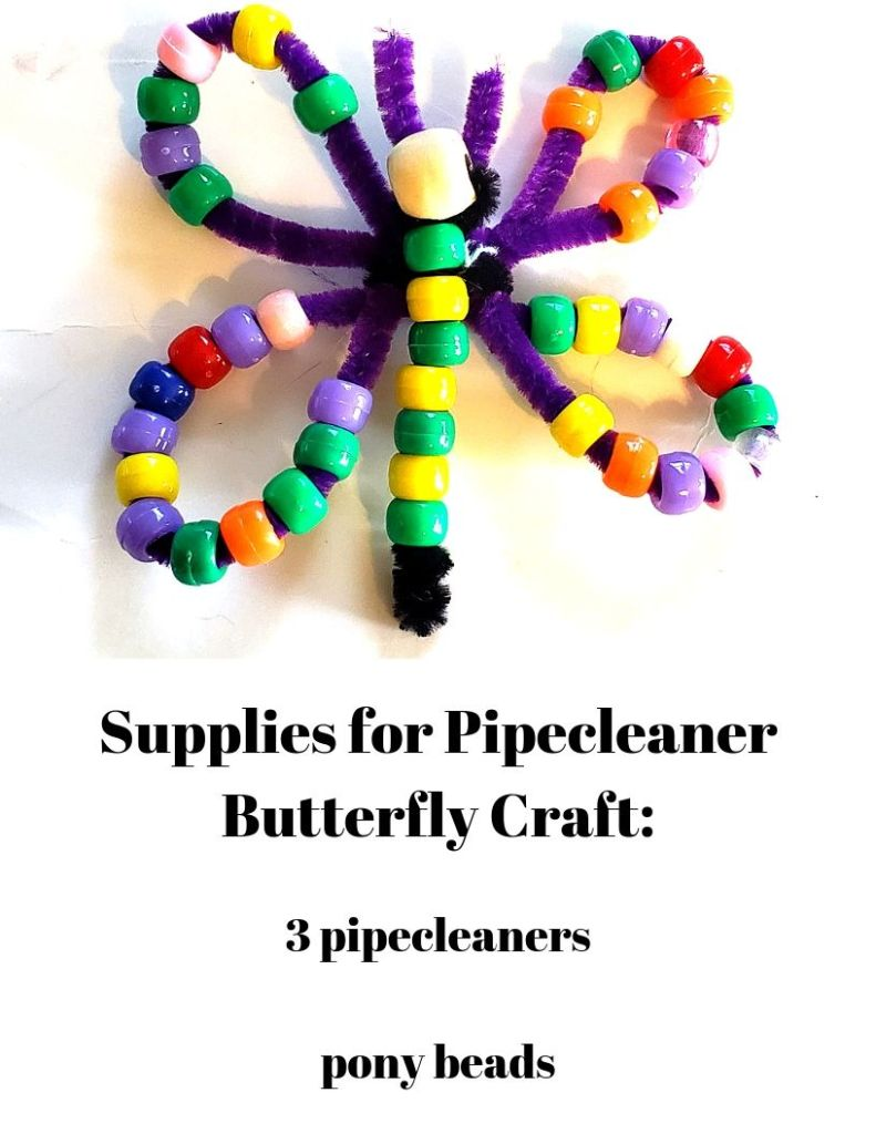 Supplies for pipecleaner butterfly