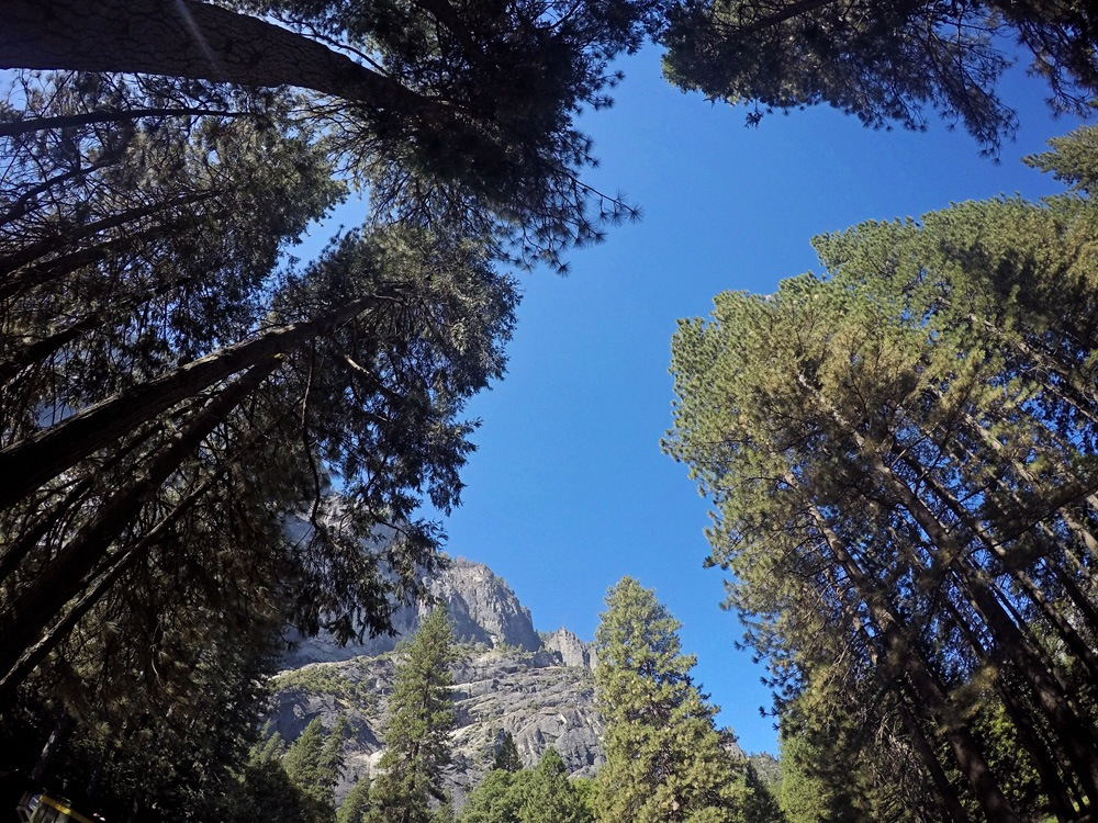 GoPro in Yosemite