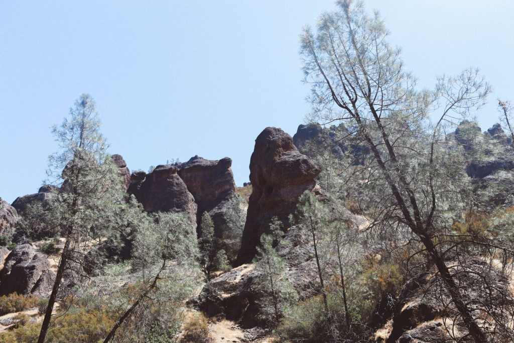 Pinnacles National Park Skedaddle