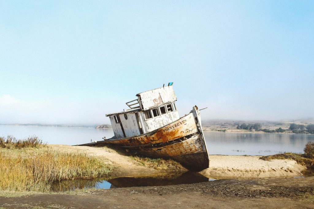 15 Things To Do In Point Reyes