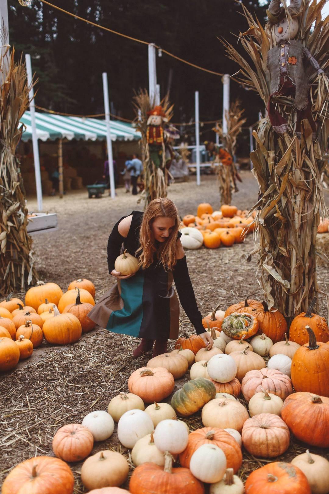 pumpkin patch woman skirt