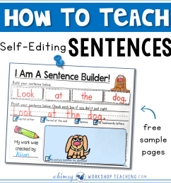 Sentences: Building and Self Editing - Whimsy Workshop Teaching [ 2000 x 2000 Pixel ]