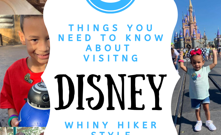 How To Do A Family Disney Trip
