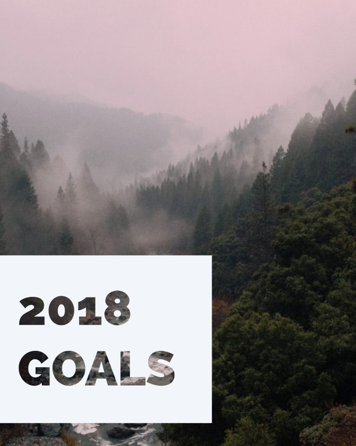 a foggy expanse of trees in a forest with a white text box that says 2018 goals