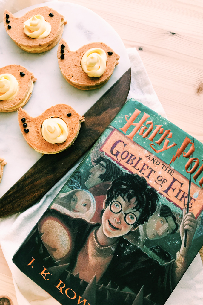 weasleys' canary cream biscuits next to a harry potter book