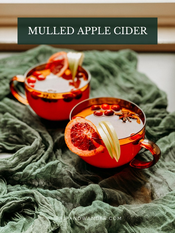 two mugs full of mulled apple cider with citrus and cranberry garnish