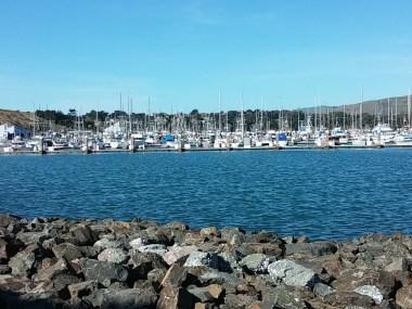 Spud Point Marina, Bodega Bay