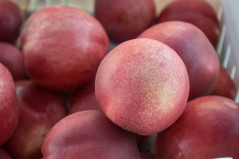 white nectarines | SRCFM | whiskandmuddler.com