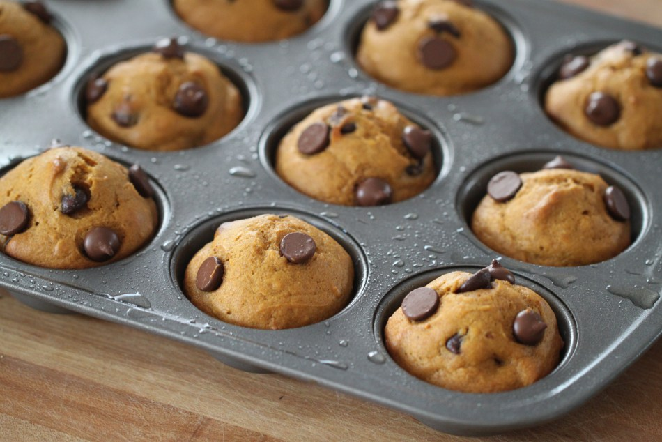 Freshly baked chocolate chip pumpkin muffins sit in a muffin pan, ready to be removed.