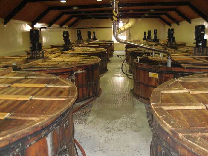 Hölzerne Washbacks in Glenrothes. Bild: Karl Wolffhardt