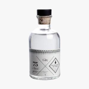 gin-tonik