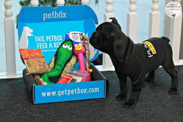 PetBox-January-05
