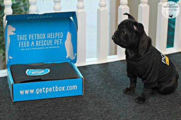 PetBox-January-08