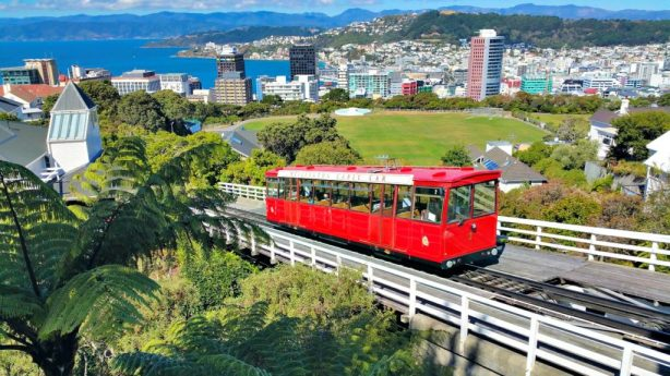 Facts About Wellington