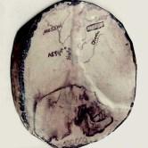 first mesopotamian man, 5th stage; Haidi Awsi