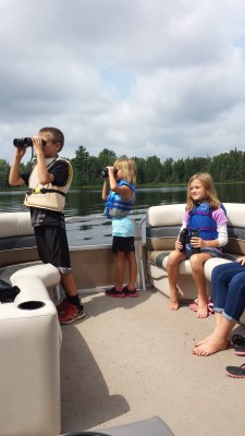 loon watching