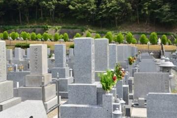 力石のお墓参り