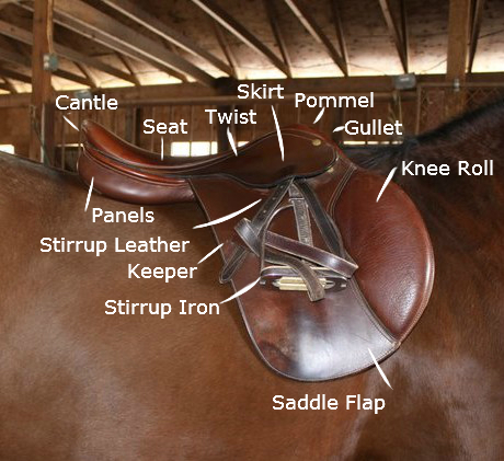 parts_of_saddle.jpg
