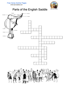 english-saddle-crossword