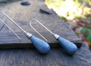 Blue Coral Earrings 2