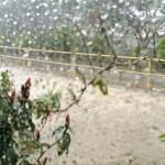 Hujan di Tengah Kemarau