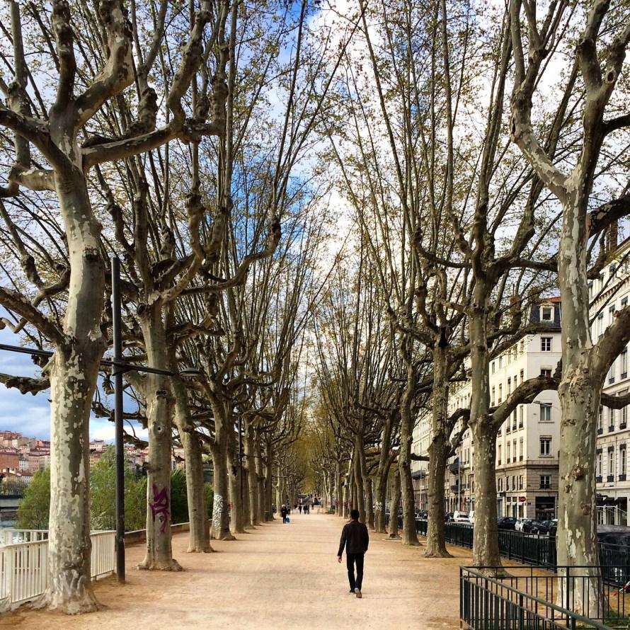 Citytrip Lyon | Boulevard