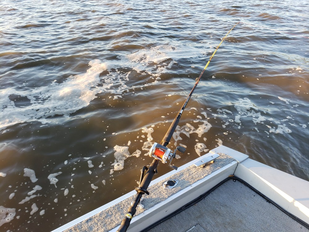 How to Drift Fish for Channel Catfish