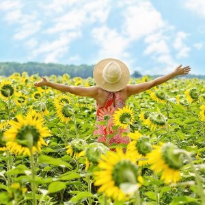 Woman Loving Life in a Sunflower Field