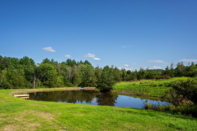 ferrisburgh-pond-14