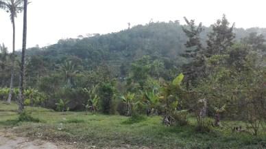 Ventara Resort