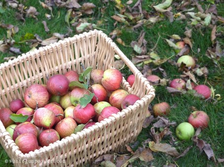 basket of applesauce