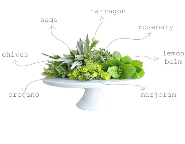 herbs for the garden