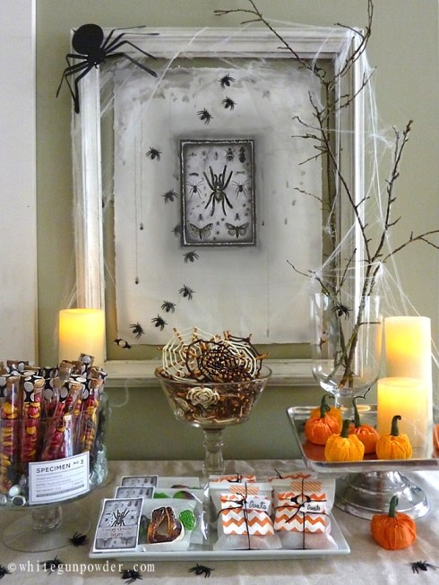 Halloween display / Spiders & Insect / Treats