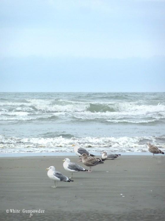 Summer, Sun, Sand, and Salty Air at Seabrook, Washington