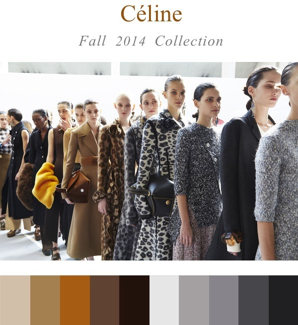 Celine Fall:Winter 2014 Collection