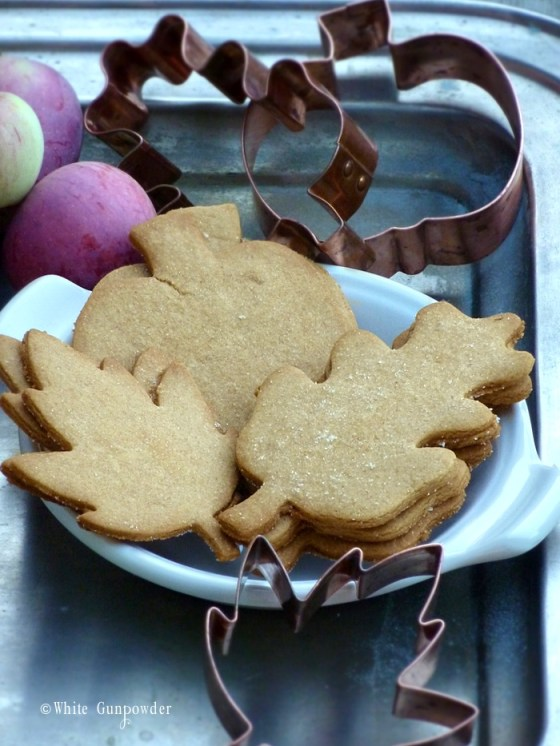 autumn 2014,  graham cracker cookies