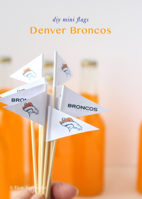 Denver Broncos mini flags