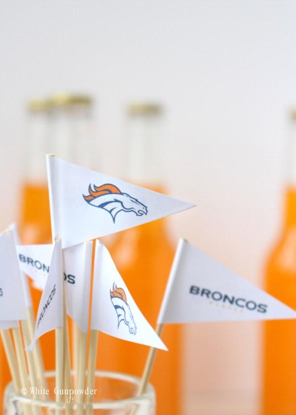 Denver Broncos mini flags