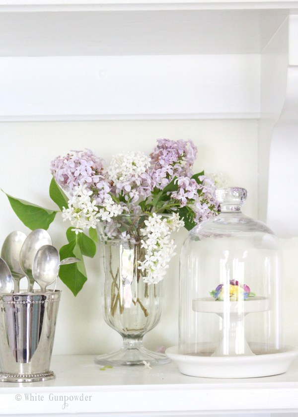 Spring blossoms-flowers, lilacs