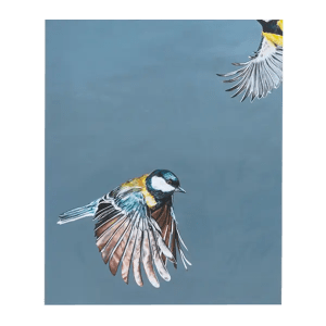 Bluetit - Natalie Toplass - Limited Edition